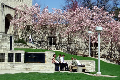 Students sitting at a fountain with blooming magnolia trees in the background.