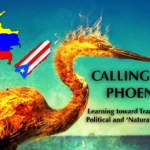 """""""Calling the Phoenix"""": Learning toward Transcending Political and 'Natural' Disasters"""